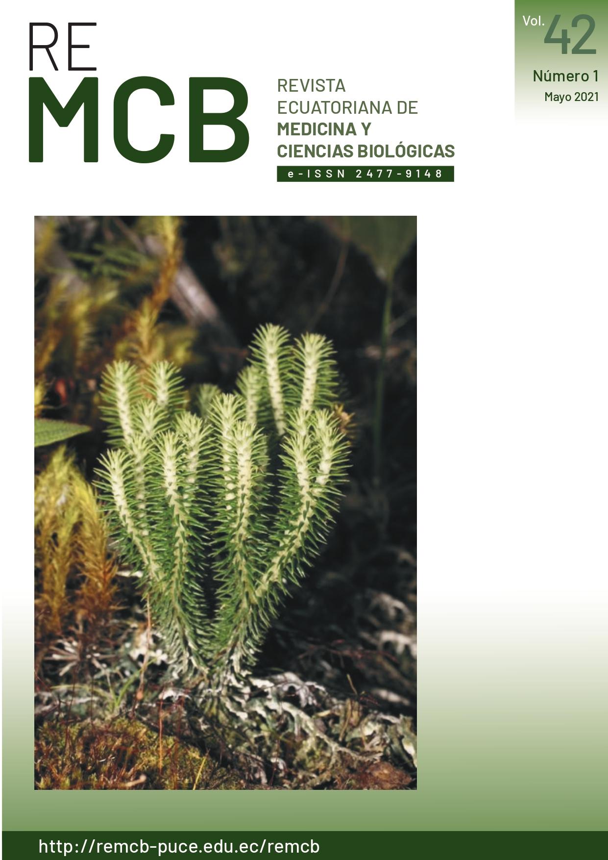 Foto portada: Robbin Moran  Phelgmariurus reflexus (Lycopodiaceae) es una licofita común y muy difundida en los trópicos  americanos. Se la puede distinguir fácilmente de otros géneros tropicales, por presentar tallos  isodicotómicos (tallos que se dividen igualmente en dos partes). Presenta hojas sésiles, enteras y  uninervadas. La foto representa a un espécimen encontrado al borde del carretero en la provincia de  Imbabura, a 35 km al oeste de Otavalo